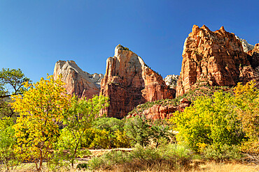 Court of Patriarchs, Zion National Park, Colorado Plateau, Utah, United States of America, North America