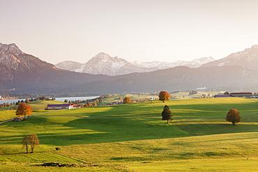 Prealps landscape and Forggensee Lake at sunset, Fussen, Ostallgau, Allgau, Allgau Alps, Bavaria, Germany, Europe