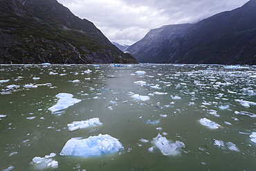 Heavy ice near face of South Sawyer Glacier, misty conditions, mountain backdrop, Tracy Arm Fjord, Alaska, United States of America, North America