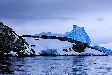 Moss covered rocks with dusting of snow, blue iceberg, Torgersen Island, Anvers Island, Antarctic Peninsula, Antarctica, Polar Regions