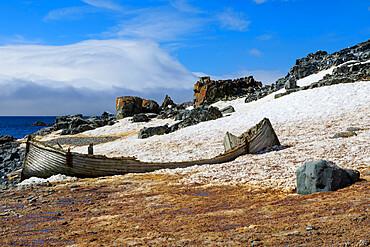 Handsome derelict wooden boat on Half Moon Island snowy shore, blue sky and sun, South Shetland Islands, Antarctica, Polar Regions