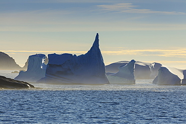 Icebergs and sea mist, entrance to Skjoldungen Fjord, early morning, King Frederick VI Coast, remote South East Greenland, Denmark, Polar Regions
