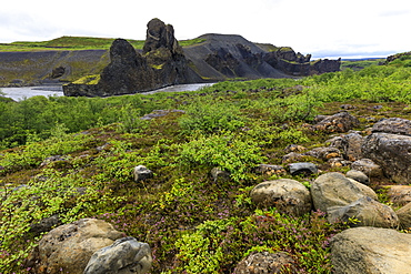 Field by basalt rock formations in Vatnajokull National Park, Iceland, Europe