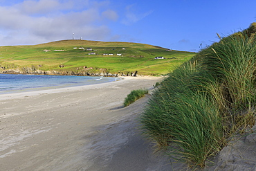 Scousburgh Sands, Spiggie Beach, white sand, turquoise sea, South Mainland, Shetland Isles, Scotland, United Kingdom, Europe