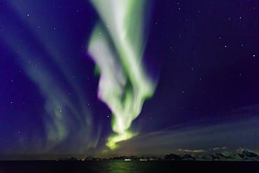 Northern Lights (Aurora Borealis), spectacular show in winter, Norwegian Sea, off Lofoten, Nordland, Arctic Circle, North Norway, Europe