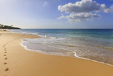 Tropical Anse de la Perle beach, sunbather, golden sand, footprints, Death In Paradise location, Deshaies, Guadeloupe, Leeward Islands, West Indies, Caribbean, Central America