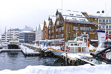 Tromso small boat harbour, heavy snow in winter, Tromso, Troms og Finnmark, Arctic Circle, North Norway, Scandinavia, Europe