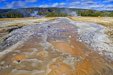 Grand Geyser run-off, Upper Geyser Basin, Yellowstone National Park, UNESCO World Heritage Site, Wyoming, United States of America, North America