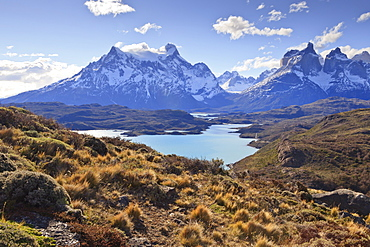 Grasses, Lago Pehoe and the Cordillera del Paine, Torres del Paine National Park, Patagonia, Chile, South America