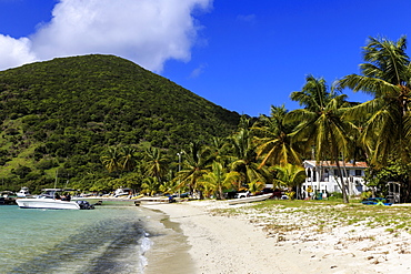 Police station on beach, green hill and palm trees, Great Harbour, Jost Van Dyke, British Virgin Islands, West Indies, Caribbean, Central America