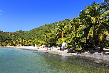 Clear water, beach, boats and palms, Great Harbour, Jost Van Dyke, British Virgin Islands, West Indies, Caribbean, Central America
