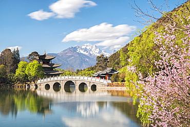 Black Dragon Pool with Moon Embracing Pagoda and Suocui Bridge in Jade Spring Park of Lijiang, Yunnan, China, Asia