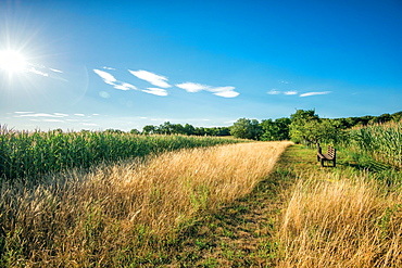 HDR capture of a secluded spot in the hills, with a wooden bench facing fields and a blue sky, Baden-Wurttemberg, Germany, Europe