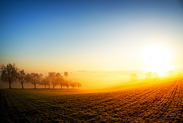 Warm morning sun illuminating dense fog in a colorful rural landscape scene, Baden-Wurttemberg, Germany, Europe