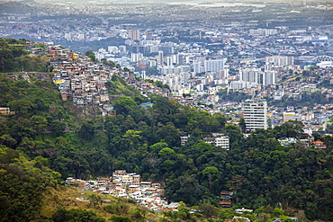 Elevated view of a favela slum on the edge of Tijuca forest, Rio de Janeiro, Brazil, South America