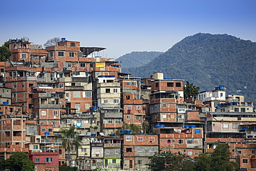 View of houses in the Cantagalo favela slum in Rio de Janeiro with the mountains of Tijuca National Park in the background, Rio de Janeiro, Brazil, South America