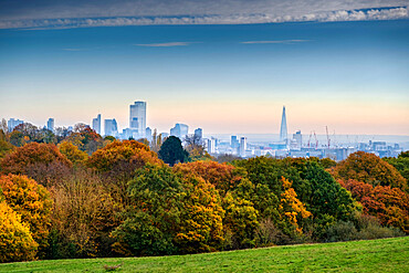 London, Highgate, woodland on Hampstead Heath in Autumn, City of London financial district skyline, no people