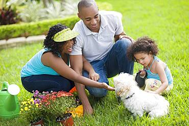 African family petting dog