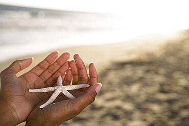 African woman holding starfish