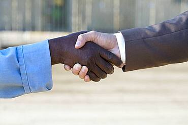 Multi-ethnic businessman and construction worker shaking hands