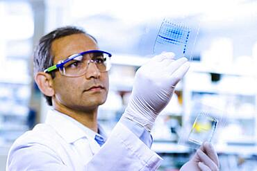Indian male scientist looking at DNA film