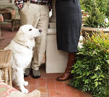 Caucasian couple and dog on patio