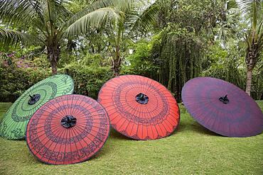 Traditional parasols in backyard