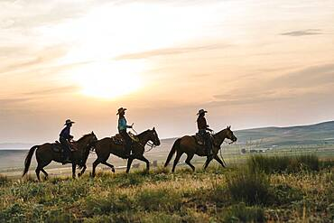 Cowgirls riding horses in rural field
