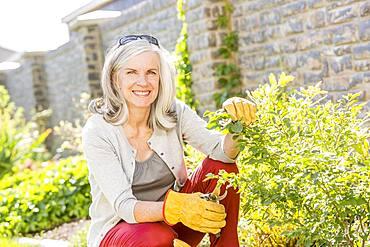 Caucasian woman pruning plants in garden