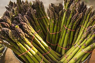 Close up of bunches of asparagus
