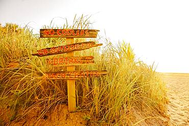 Tourist signs for beach in grass