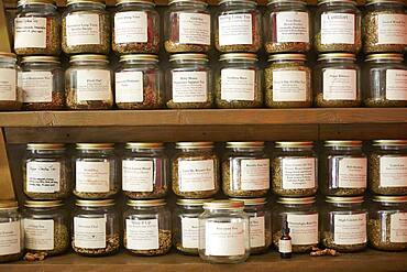 Jars of variety of teas in tea shop
