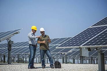 Caucasian technicians talking near solar panels