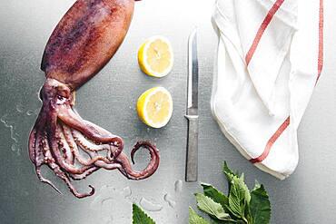 Squid, lemon and herbs on metal tabletop
