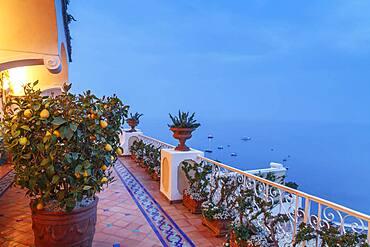 Plants on balcony overlooking seascape