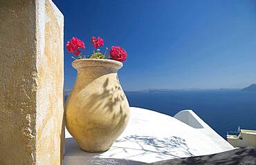 Flower pot on balcony overlooking seascape