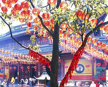 Lanterns on tree outside Chinese temple, Shanghai, Shanghai, China