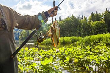 Mari fisherman holding caught fish at rural river