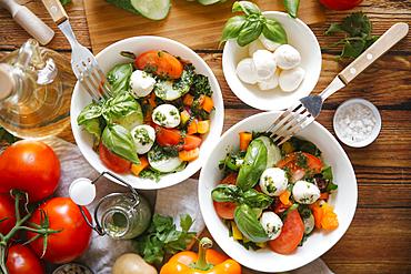 Ingredients for caprese salad