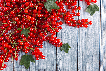 Red berries and leaves on table