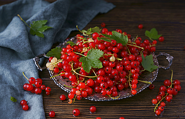 Red berries and leaves on tray
