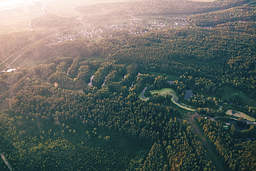 Aerial view of river and trees