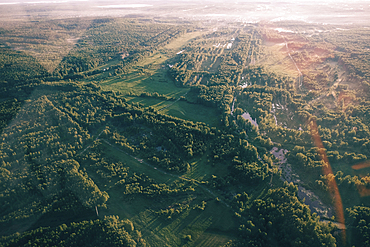 Aerial view of trees in landscape