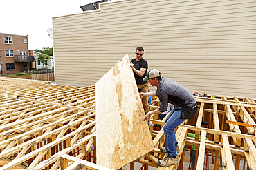 Caucasian men carrying plywood at construction site