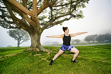 Mixed race woman exercising and stretching near tree