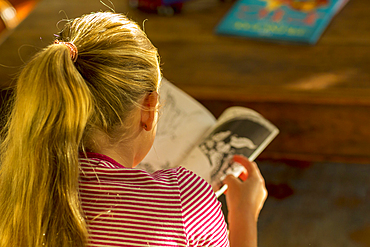 Rear view of Caucasian girl reading book