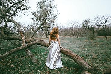 Glamorous location woman standing near fallen tree