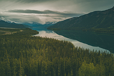 Scenic view of trees and river