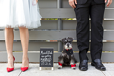 Couple with dog near wedding announcement