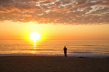 Silhouette of man standing on ocean beach at sunset